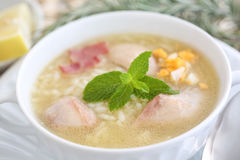 Закройте вверх вкусного и горячего блюда куриного супа Стоковые Изображения