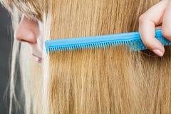 Закройте вверх голубого гребня в белокурых волосах Стоковое Изображение RF