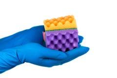 Закройте вверх голубых рук перчаток держа губку, ладони руки совместно, изолированная белая предпосылка Стоковые Фото