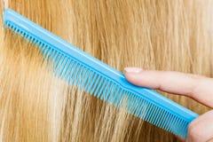 Закройте вверх голубого гребня в белокурых волосах Стоковые Фото
