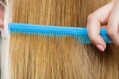 Закройте вверх голубого гребня в белокурых волосах Стоковое фото RF