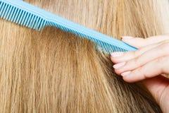 Закройте вверх голубого гребня в белокурых волосах Стоковая Фотография RF