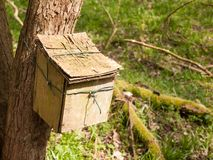 закройте вверх деревянного контейнера прикрепленного к стволу дерева в окружающей среде природы полесья Стоковая Фотография