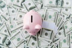 Закройте вверх денег и копилки доллара от верхней части Стоковое Фото