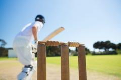 Закройте вверх деревянного пня отбивающим мяч стоя на поле стоковая фотография rf