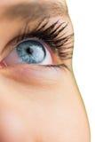 Закройте вверх женского голубого глаза Стоковые Фотографии RF