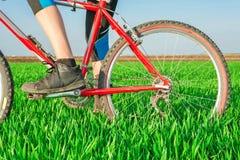 Закройте вверх женщины на велосипеде Стоковые Изображения RF