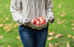 Закройте вверх женщины с яблоками в осени Стоковое Фото