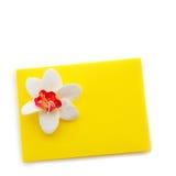 Закройте вверх желтого конверта с цветком Стоковые Фото