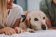 Закройте вверх жизнерадостной молодой женщины лежа в кровати с собакой стоковая фотография