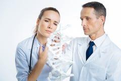 Закройте вверх задумчивых врачей смотря модель дна Стоковое фото RF