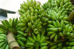 Закройте вверх зеленых бананов стоковые фото