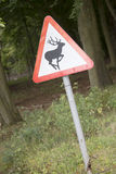 Закройте вверх знака оленей Стоковая Фотография RF