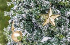Закройте вверх золотой звезды на рождественской елке Стоковая Фотография RF