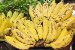 Закройте вверх зрелого банана Стоковые Изображения