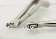 Закройте вверх зубоврачебного пинцета извлечения Стоковые Фотографии RF