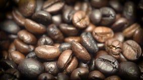 Закройте вверх идти дождь кофейные зерна в arabica и rubusta замедленного движения и видеоматериал