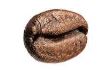 Закройте вверх изолированного кофейного зерна Стоковое Изображение
