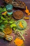 Закройте вверх ингридиентов ayurvedic обработки i neem e, neem выходит, порошок neem, расшива, гвоздичное дерево, турмерин, вода стоковые фото