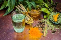 Закройте вверх ингридиентов ayurvedic обработки i neem e, neem выходит, порошок neem, расшива, гвоздичное дерево, турмерин, вода стоковое изображение