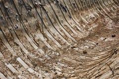 Закройте вверх картины земли, вертикальных линий Стоковая Фотография RF