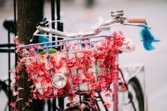 Закройте вверх корзины и Hadlebar женским корзины оборудованной велосипедом Стоковое Фото