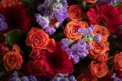 Закройте вверх красочного букета цветков с красными розами и gerbers Стоковое Изображение
