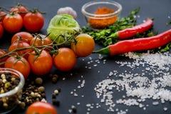 Закройте вверх красочных специй и свежих овощей для варить на темной предпосылке металла с космосом для текста Взгляд сверху био стоковые изображения rf