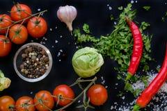 Закройте вверх красочных специй и свежих овощей для варить на темной предпосылке металла с космосом для текста Взгляд сверху био стоковое фото