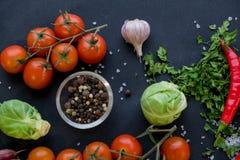 Закройте вверх красочных специй и свежих овощей для варить на темной предпосылке металла с космосом для текста Взгляд сверху био стоковые фото