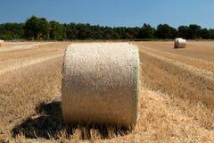 Закройте вверх круглых связок на поле с деревянным и голубым небом на заднем плане стоковое фото