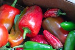 Закройте вверх кучи сладостных и горячих перцев, главным образом красной и gree стоковое изображение