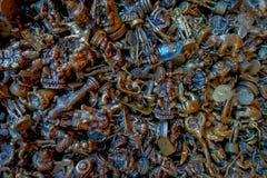 Закройте вверх малых бронзовых ремесел различных диаграмм для получите везение в Pokhara стоковое фото rf