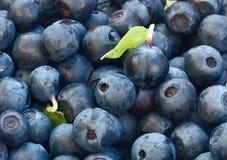 Закройте вверх натуральных продуктов голубик для здоровых еды и nutr Стоковое Изображение RF