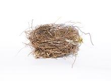 Закройте вверх на пустом гнезде птицы изолированном на белой предпосылке Стоковое фото RF