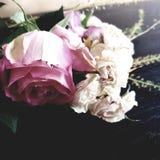Закройте вверх на старой и вянуть большая розовая роза и небольшие белые розы цветут педали лежа на том основании стоковые изображения rf