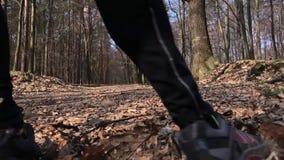 Закройте вверх ног спортсмена бежать на forrest дороге Медленный mo видеоматериал