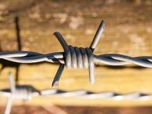 закройте вверх острого металла колючей проволоки на деревянном стробе Стоковое Изображение RF