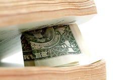Закройте вверх одного доллара между страницами старой книги Стоковое Фото