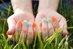 Закройте вверх пальца женщины на траве Стоковые Изображения