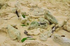 Закройте вверх песка на пляже Стоковое Фото
