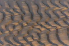 Закройте вверх песочного золотого пляжа на золотом часе Стоковые Изображения