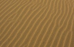 Закройте вверх песчаного пляжа Стоковые Изображения