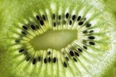 Закройте вверх плода кивиа на предпосылке белого света, макроса, абстрактной фотографии стоковое изображение