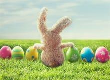 Закройте вверх покрашенных пасхальных яя и зайчика на траве Стоковая Фотография RF