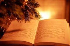 Закройте вверх по взгляду открытой книги и coniferous ветви Стоковое Изображение RF