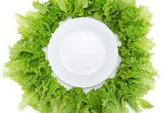 Закройте вверх по взгляду пустых плиты и салата вокруг Стоковое фото RF