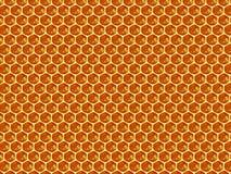 Закройте вверх по взгляду работая пчел на клетках меда стоковое фото rf