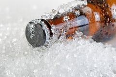 Закройте вверх по взгляду льда - холодные шея и крышка пивной бутылки Стоковое Изображение RF