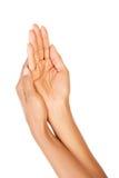 Закройте вверх по всходу красивых женских рук Стоковое Изображение
